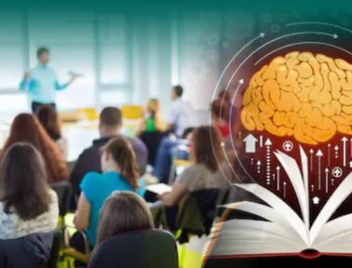 Teacher Training On The Learning Brain